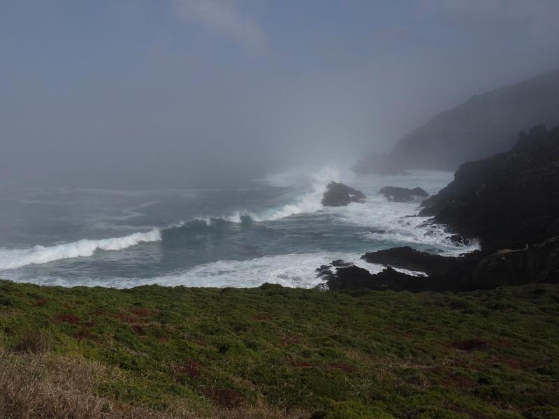 Cabo de Home et praia de Melides Dsc03216