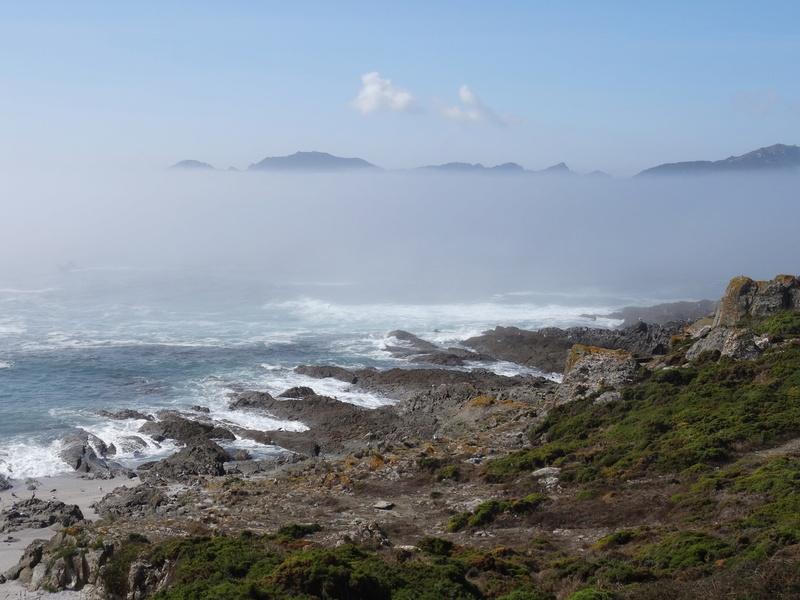 Cabo de Home et praia de Melides Dsc03217