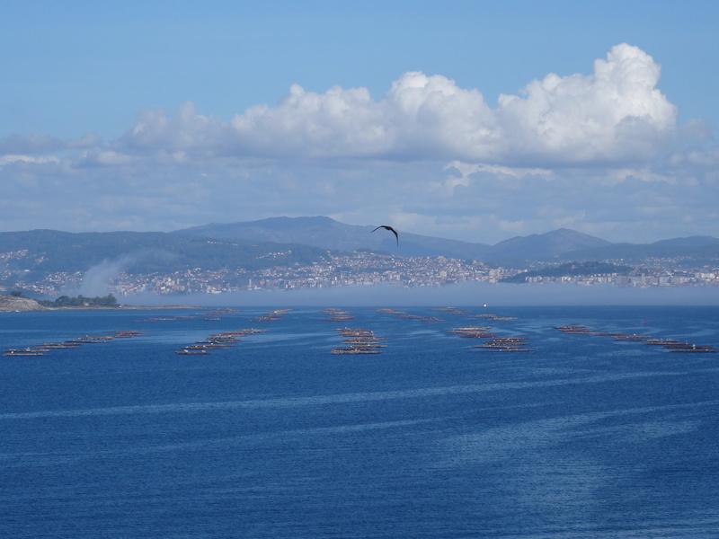 Cabo de Home et praia de Melides Dsc03218