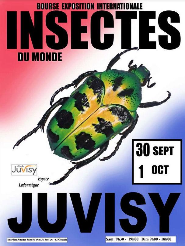 Bourse Exposition Internationale d'Insectes du monde 2017 Affich10