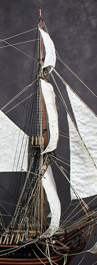 l'Hermione  - Page 7 Img_2310