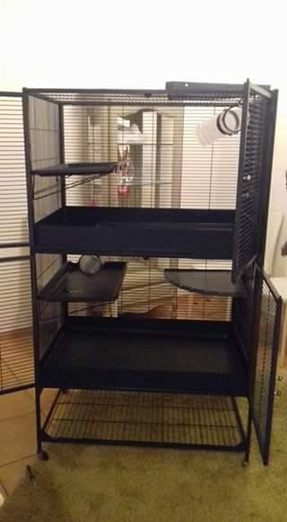 3 cages et accessoires (76) 20770410