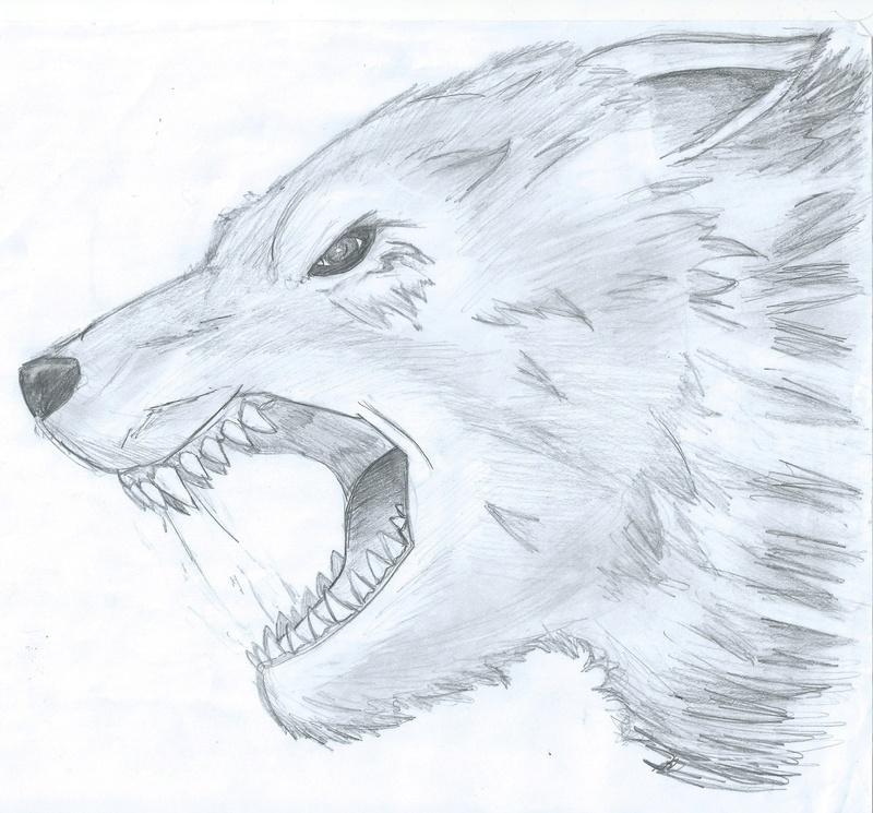 Le dessin...... Loup_a10