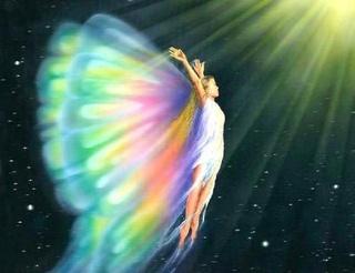Papillons de la Terre, envolez-vous, légers, libres ! Papill10