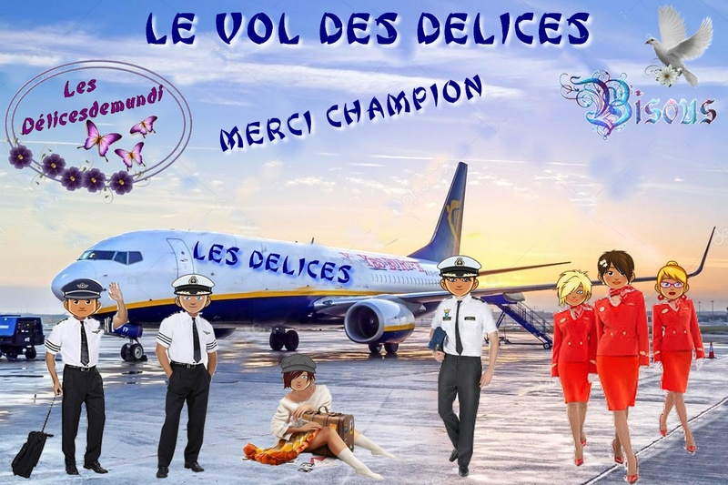 MERCI CHAMPION Avion_10