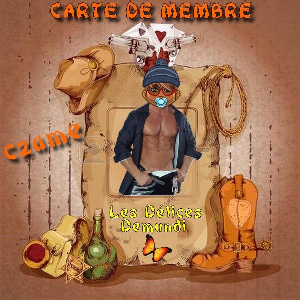 VOTRE CARTE EST PRETE    - Page 5 Czame10