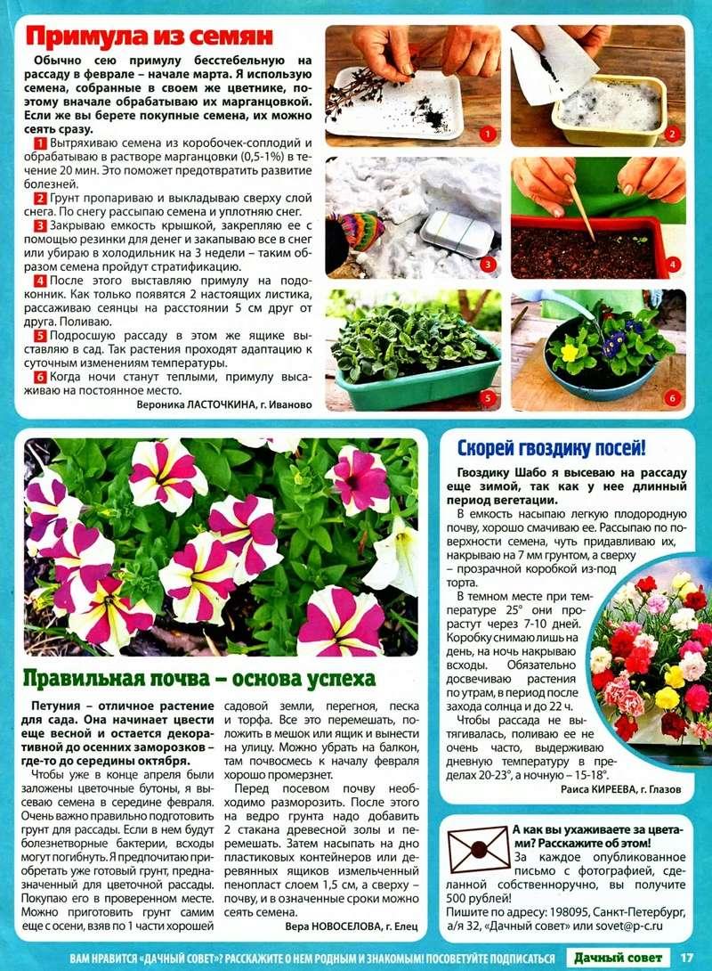 статьи о растениях из  газет и журналов - Страница 7 19890910