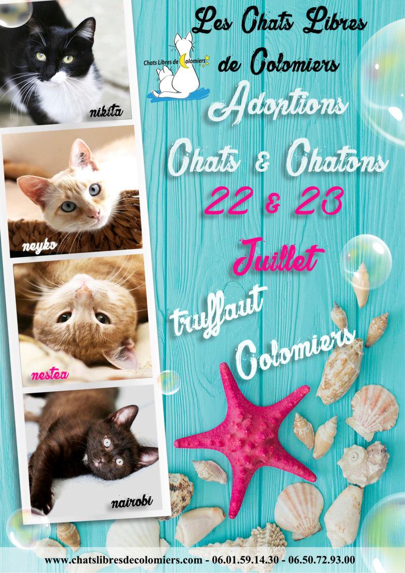 week-end adoptions les 22 et 23 juillet à Truffaut Juille11