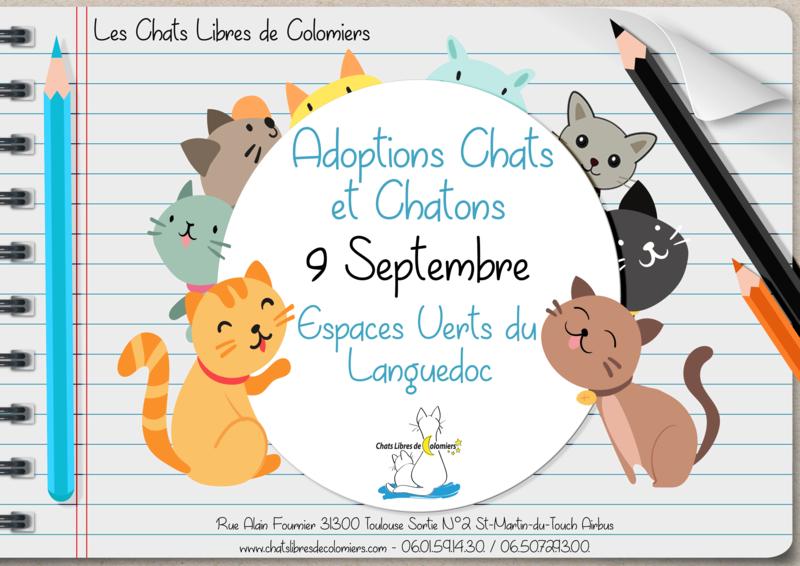 Samedi 9 Septembre aux Espaces Verts du Languedoc Rentry10