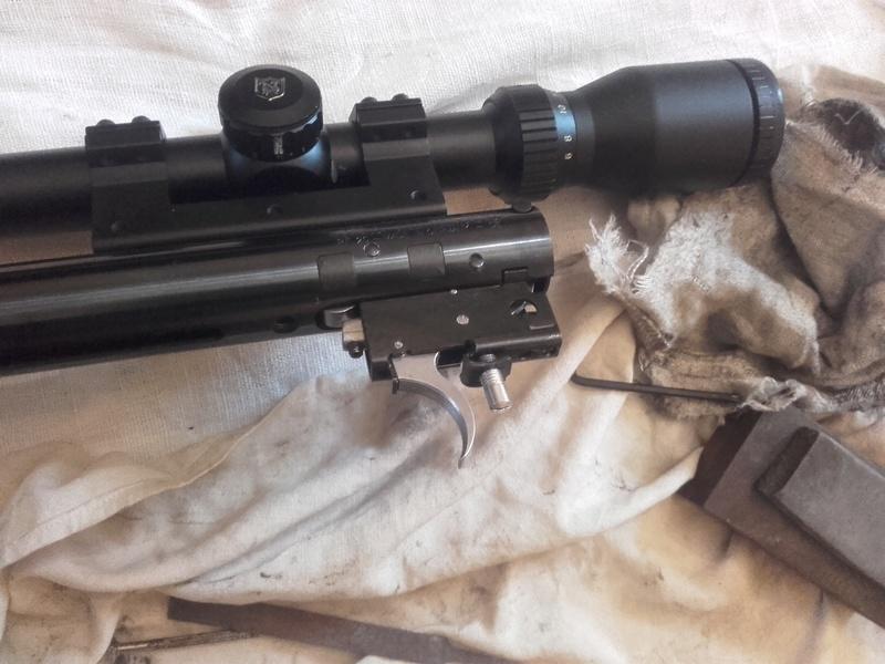 HW95 Match: Une HW98 à canon allégé et visée ouverte 20170614