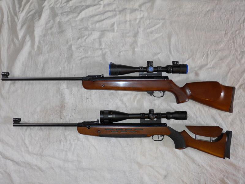HW95 Match: Une HW98 à canon allégé et visée ouverte P1040512