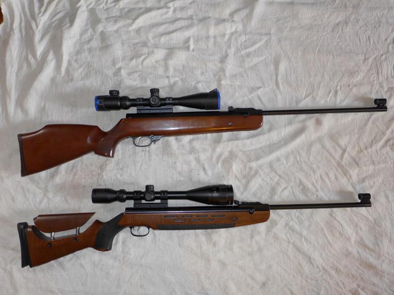 HW95 Match: Une HW98 à canon allégé et visée ouverte P1040515