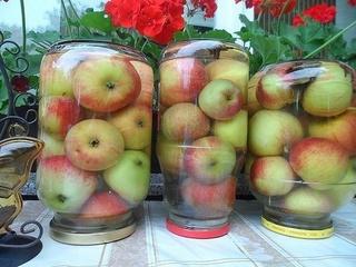 Яблоки мочёные - самый простой рецепт Pxvugw11