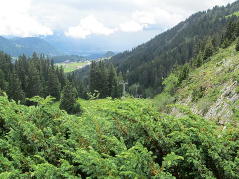 Construction du télésiège débrayable 4 places Le Fer-Brion-Tête d'Ai à Leysin VD Suisse (TSD4) Img_2015