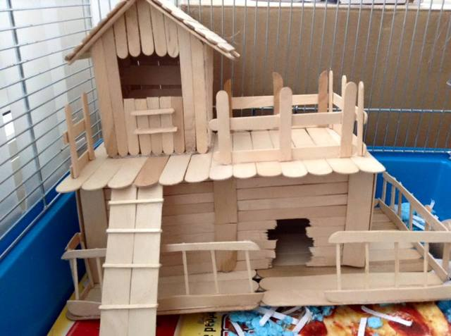 Homemade Popsicle Stick Toys 12038210