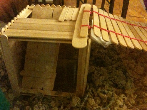 Homemade Popsicle Stick Toys 40622210