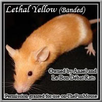 Varieties of Mice Lethal11
