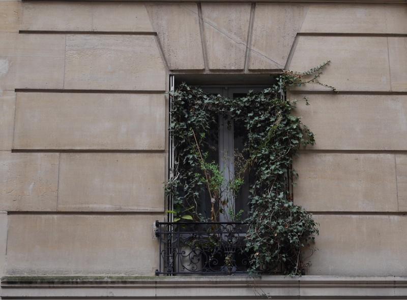 [Fil ouvert ] Fenêtres, volets, ouvertures... - Page 5 P1010512