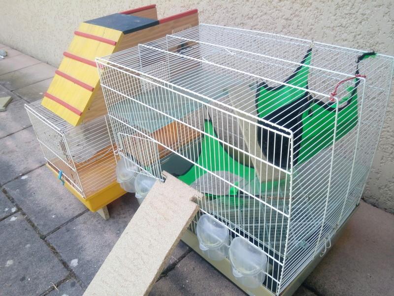 Vend cages ses accessoires dans le 69 Img_2012