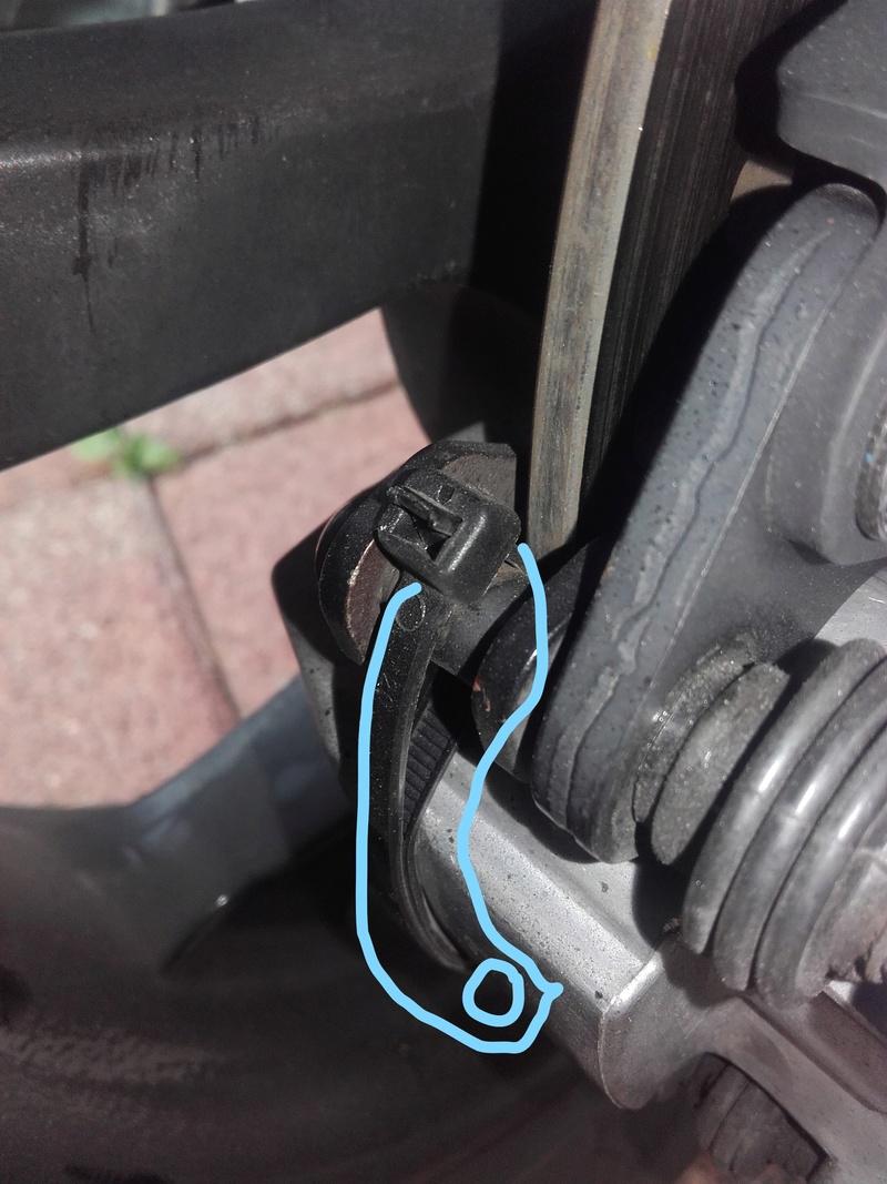 Vibrations plaquette de frein Collie10