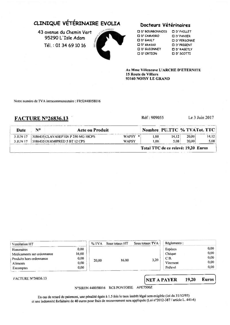 4 434.03 EUROS DE FACTURES A PAYER POUR NOTRE PAUVRE WAPSY Factur11