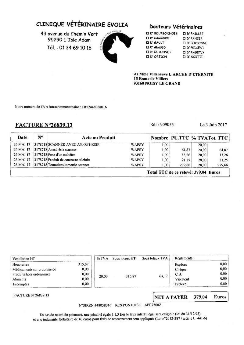 4 434.03 EUROS DE FACTURES A PAYER POUR NOTRE PAUVRE WAPSY Factur12