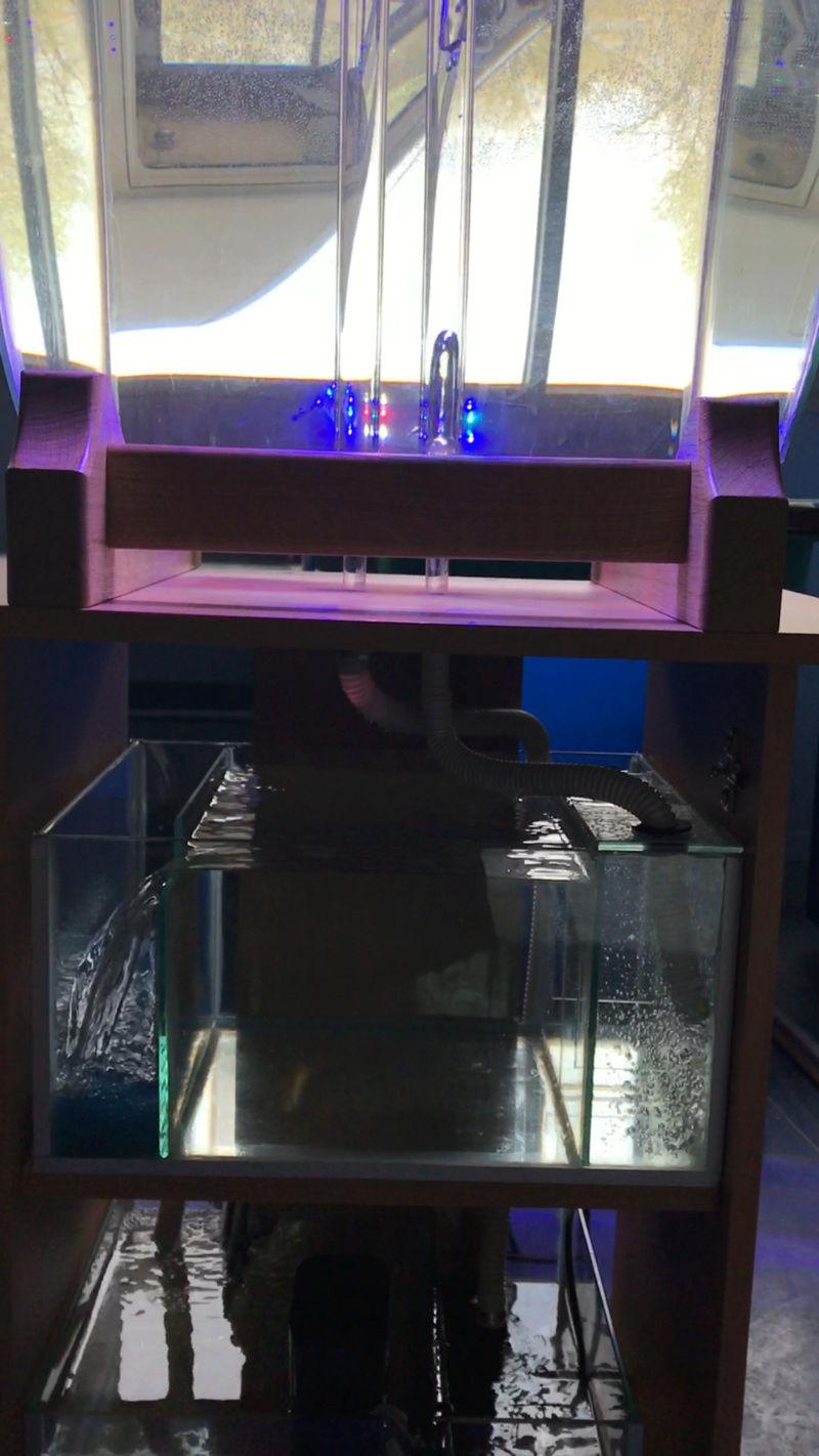 Projet aquarium cylindrique  Img_1211