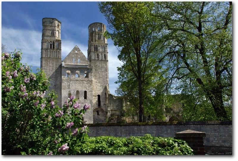 abbaye de jumieges seine maritime 23986010