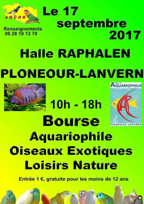 Bourse de Ploneour-Lanvern le 17 09 2017 21318810