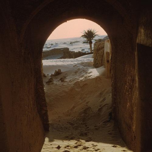 [Habitation] Shafaq Tumblr15