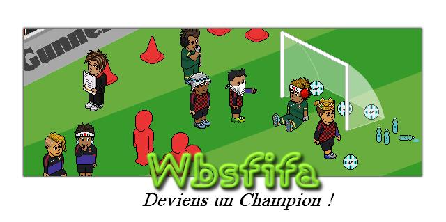 FIFA - WBSF 2017-012