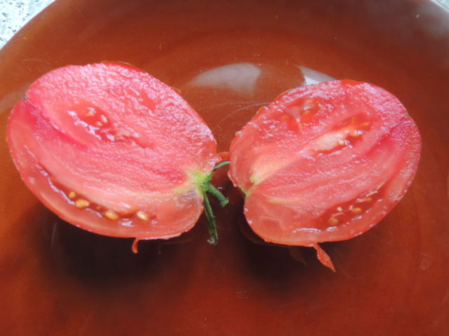 Une tomate, mais laquelle ?? Dscn7113