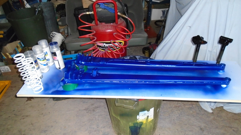 peinture bleu yamaha Dsc00110
