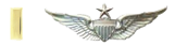 Second Lieutenant Company XO Rated Senior Aviator