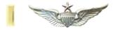 Second Lieutenant Unit Training Officer Rated Senior Aviator