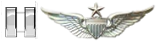 Captain Company Commander  Unit Training Officer Rated Senior Aviator