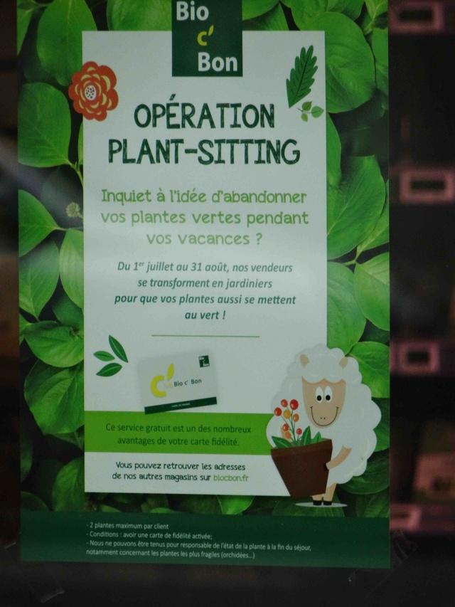 Supermarché Bio c'bon Dsc02719