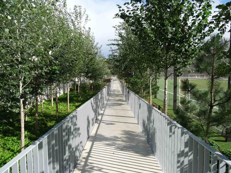 Parcours santé Parc de Billancourt Dsc03429