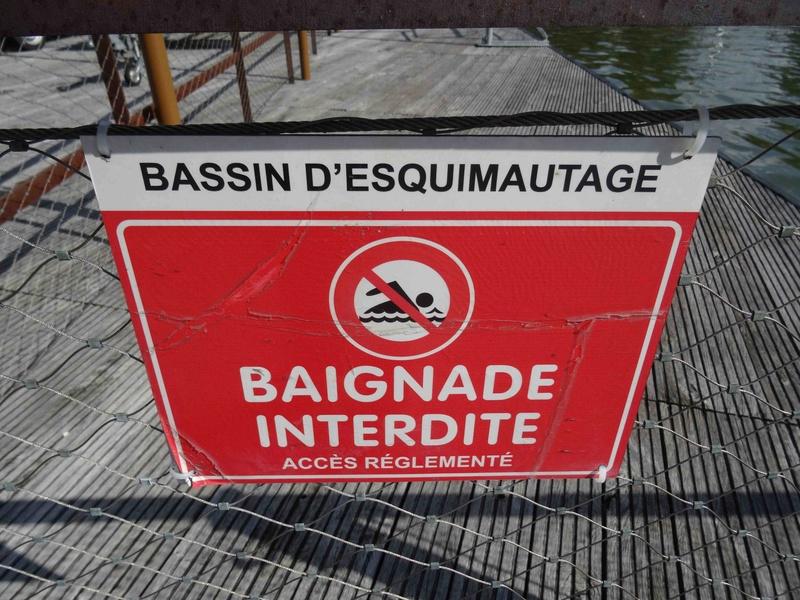 Base nautique de l'île Monsieur Dsc03822