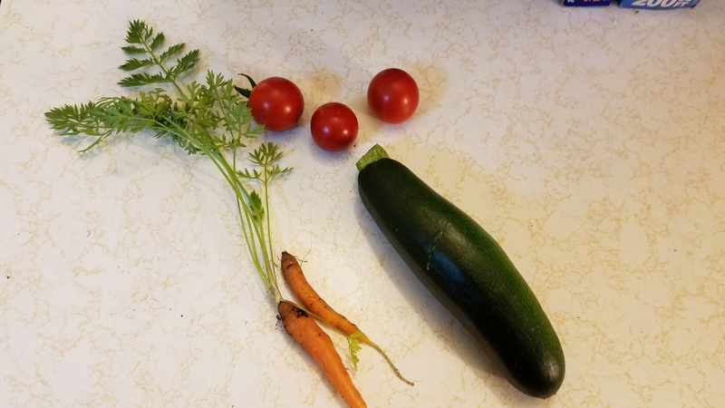 Today's Harvest - Page 2 20170773