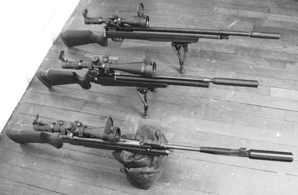 FX T12 Walther LGV Benjamin Marauder: Une petite chiée de photos Dsc05311