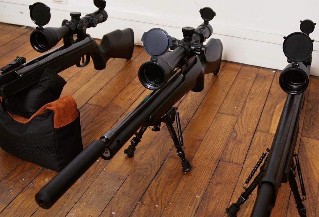 FX T12 Walther LGV Benjamin Marauder: Une petite chiée de photos Dsc05312
