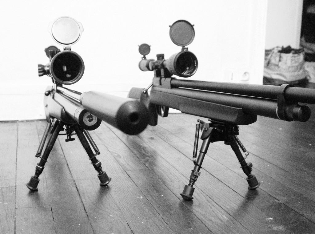 FX T12 Walther LGV Benjamin Marauder: Une petite chiée de photos Dsc05313