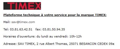 """Timex """"perpetual calendar """" Sans_t10"""
