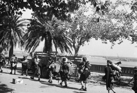 LFC : 16 Juin 1940, un autre destin pour la France (Inspiré de la FTL) - Page 4 Terre-10