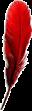 Las plumas de colores y otras señales angelicales. Pluma-12