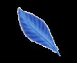 Las plumas de colores y otras señales angelicales. Pluma_11