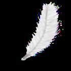 Las plumas de colores y otras señales angelicales. Plumas11