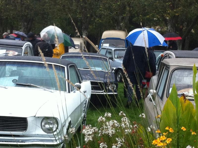 10 ème Festival de Voitures Anciennes à Dourdan 01/10/2017 Img_0819