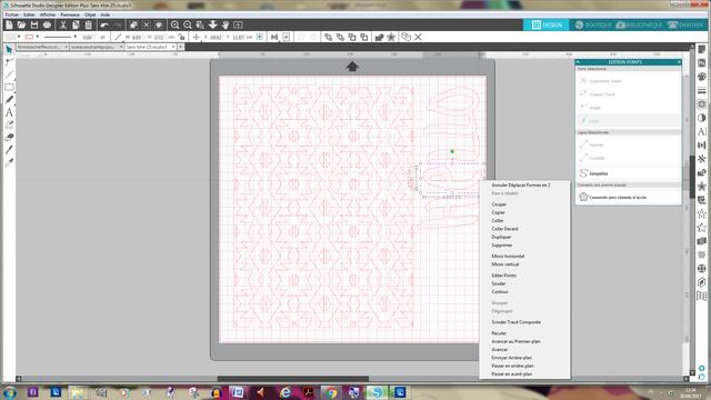Pb utilisation vectorisation avec studio 4 Captur10